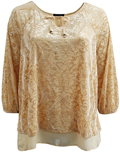 BNY Corner Women's Plus-Size 3/4 Sleeves Velvet Burnout Sweater Shirt Top Beige 2X G160.21L