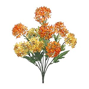 "18"" Snowball Bush x9 Orange Yellow (pack of 12) 33"
