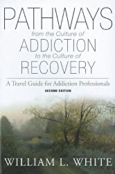 Pathways from the Culture of Addiction to the Culture of Recovery: A Travel Guide for Addiction Professionals, 2nd Edition