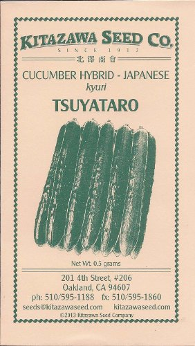 Japanese Cucumber Hybrid - Tsuyataro