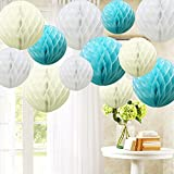 TtS 12 Pack Mixed Honeycomb Balls Table Garland Wedding Party Decoration--Small/Medium/Large Mixed Sizes Available