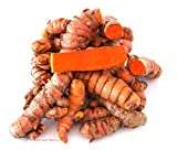Turmeric Roots: Fresh Whole Organic Raw - 4 Lb. Lots Premium Quality