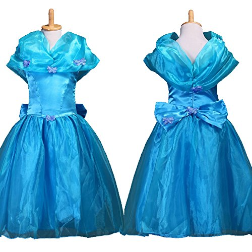 Girls Cinderella Costume Dress with Butterfly (3T)  sc 1 st  Amazon.com & Amazon.com: Girls Cinderella Costume Dress with Butterfly: Clothing