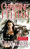 Dark Slayer (Carpathian Novel, A)