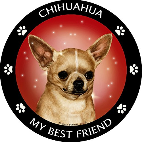 Chihuahua My Best Friend Magnet