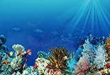 CHOIS Custom Films CF3001 Animals Tropical Fishes Glass Window Decor Frostedd DIY 3' W by 2' H