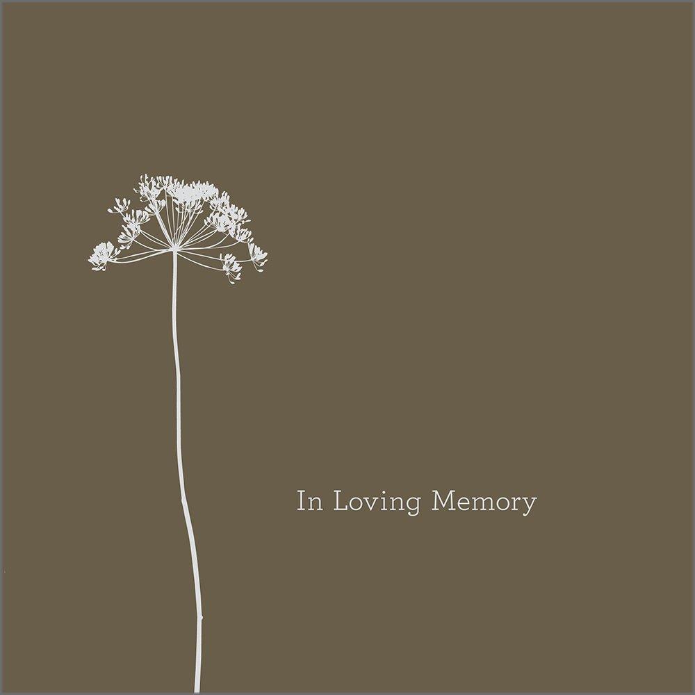 Loving Memory Dan Zadra