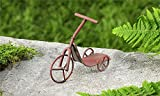 Miniature Fairy Garden Rustic Iron Tricycle Scooter, Red Review