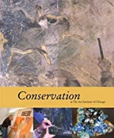 Conservation at the Art Institute of Chicago (Museum Studies (Art Institute of Chicago))
