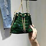 FTSUCQ Womens Mini Bucket Alligator Business Totes Shoulder Messenger Bags Handbags Hobos
