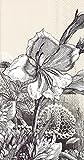Celebrate the Home Fleur 3-Ply Paper Guest Towels/Banquet Napkins, Linen, 16-Count