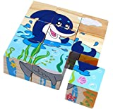 Qiaolinglong 9 Piece Colorful Wooden Block Picture Puzzle For Toddlers And Small Children (Aquatic Theme)
