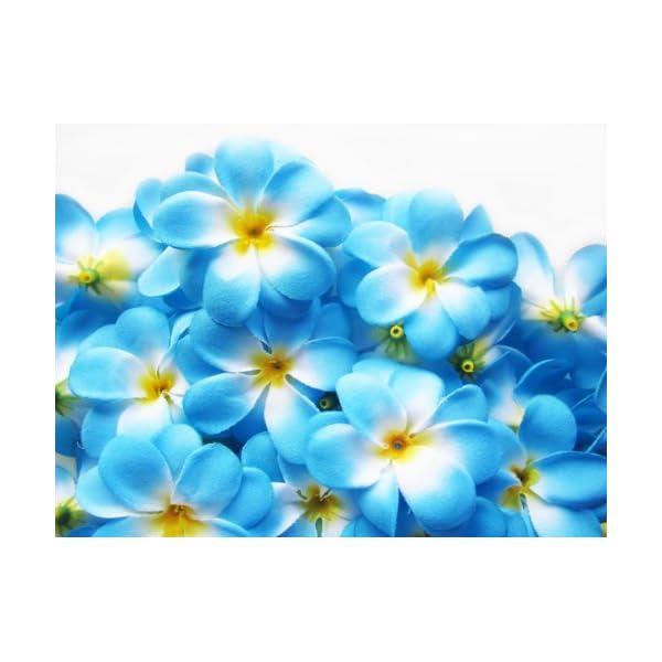 (100) Blue Hawaiian Plumeria Frangipani Silk Flower Heads – 3″ – Artificial Flowers Head Fabric Floral Supplies Wholesale Lot for Wedding Flowers Accessories Make Bridal Hair Clips Headbands Dress