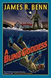 A Blind Goddess (A Billy Boyle WWII Mystery)