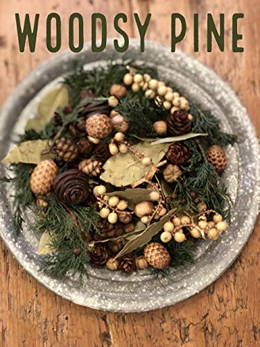 - Homestead Studios Woodsy Pine Potpourri - Fresh and Earthy Scent - Perfect Potpourri for Holidays, Fall, Winter Summer, All Year Round