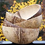 Coconut Bowl Set of 5 - Hand Made Reclaimed Coconut Water Shell Polished with Organic Virgin Coconut Oil - Great for Serving Foods (Set of 5 Mixed Color Coconut Bowls) by Truly Vegan