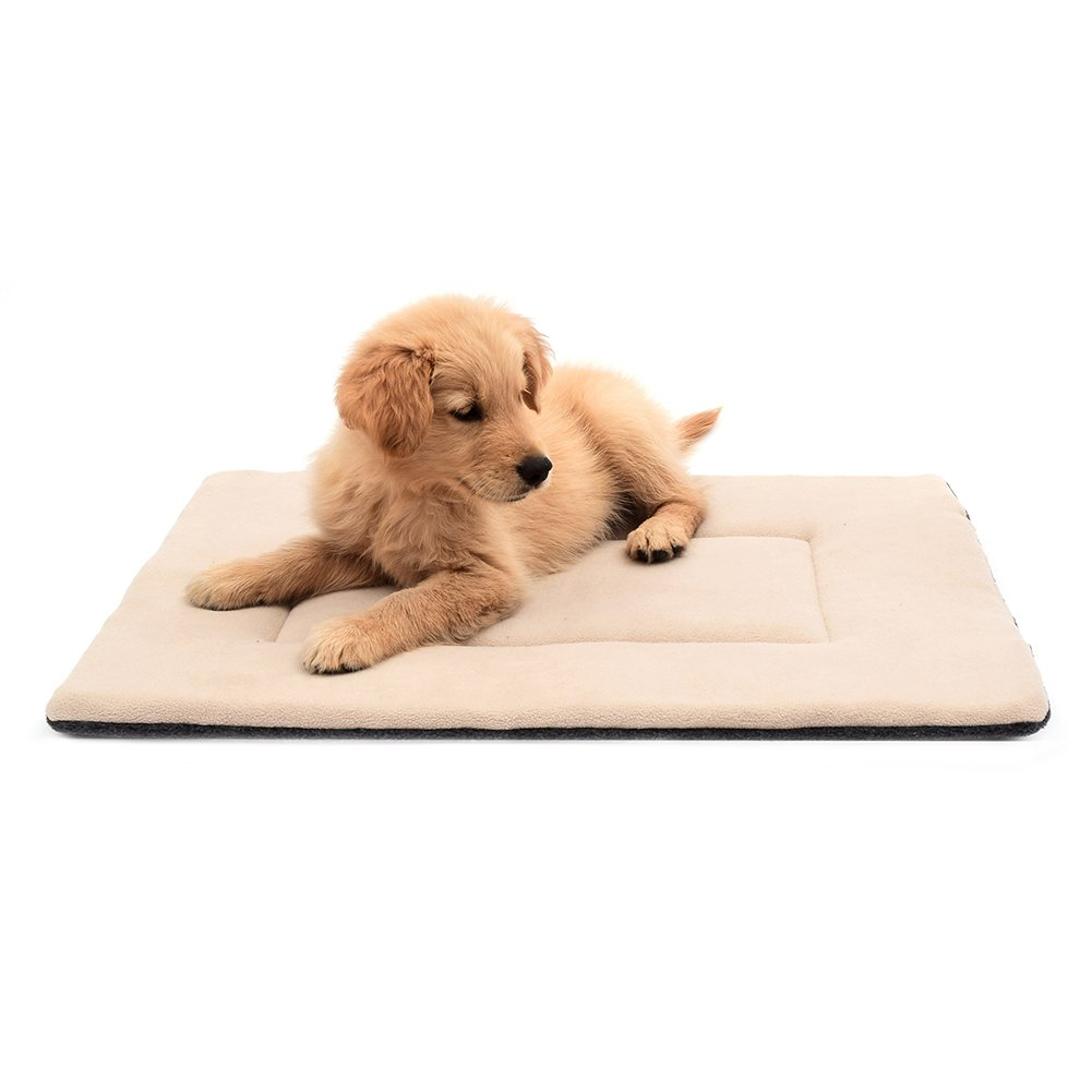 DERICOR Dogs Bed Crate Pad 24''