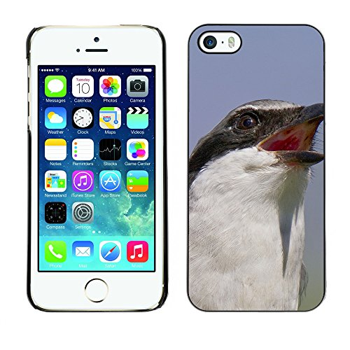 Premio Sottile Slim Cassa Custodia Case Cover Shell // F00008476 oiseau // Apple iPhone 5 5S 5G