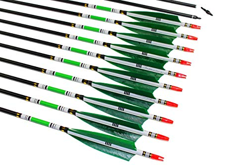 TTAD 31 inch Carbon Arrows Green Turkey Feather Targeting Arrows Archery with Screw-in Field Tips Hunting&Practice(12 Pack)]()