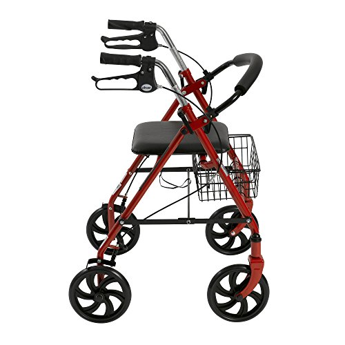 Drive Medical Four Wheel Rollator with Fold Up Removable Back