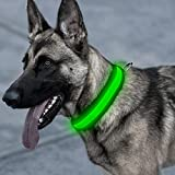 Higo LED Dog Collar, USB Rechargeable Glowing Pet