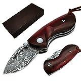 """ALBATROSS Mini Pocket Knife Red Sandalwood/Abalone Seashells 4.75"""" Damascus Steel Knife Liner Lock Folding Knife 100% Prime Quality"""