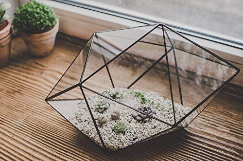 Terrarium Large Strange shape Stained Glass terrarium Succulent Flowerpot Christmas gift