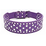 Dogs Kingdom 20''-26'' Length Fashion Jeweled Rhinestones Pet Dog Collars Sparkly Crystal Studded Leather Collar for Small Medium and Large Dogs Pitbull Purple S