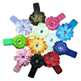 The Trendy Turtle - 12 Assorted 3-in-1 Large Flower Hair Clip Bows with Soft Stretch Crochet Child Headbands fits Infant Baby to Toddlers to Youth Girls - Mix of Gerber Daisy Lily & Peony - Great for Christmas, Photos or Baby Shower Gift