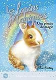 5. Les lapins magiques : Une pincée de magie (5)