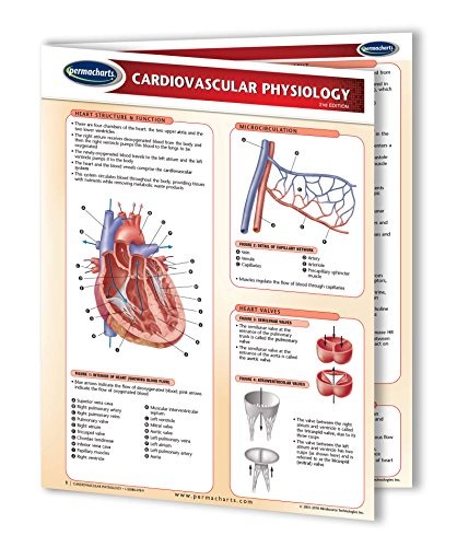 Cardiovascular Physiology - Biology Quick Reference Guide by Permacharts ()