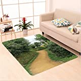 Nalahome Custom carpet s Elf Path in Woods of Hobbit Land in The Shire New Zealand Hobbiton Movie Set Image Green Brown area rugs for Living Dining Room Bedroom Hallway Office Carpet (5' X 8')
