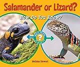 Salamander or Lizard?, Melissa Stewart, 159845238X