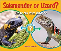 Salamander or Lizard?: How Do You Know? (Which Animal Is Which ...