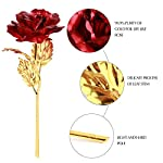 Coxeer-Foil-Rose-Mothers-Day-Gifts-24k-Red-Golden-Rose-Artificial-Rose-Foil-Flower-Fake-Forever-Rose-with-Gift-Box-Birthday-Wedding-Anniversary-Valentines-Day-Gifts-for-Women-Girls-Mom-and-Her