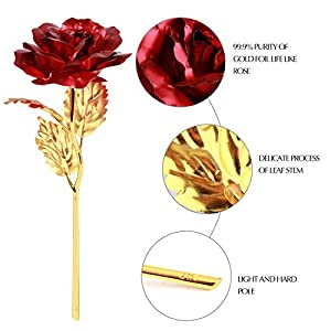 Coxeer Foil Rose Mothers Day Gifts, 24k Red Golden Rose Artificial Rose Foil Flower Fake Forever Rose with Gift Box Birthday Wedding Anniversary Valentines Day Gifts for Women Girls Mom and Her 2