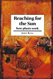 Reaching for the Sun, John King, 0521587387
