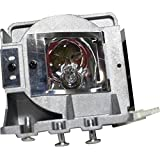 V7 - VPL2810-1N - V7 Replacement Lamp for V13H010L25 - 190 W Projector Lamp - 5000 Hour