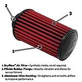 AEM (AEM-21-2258DK) Dryflow Air Filter