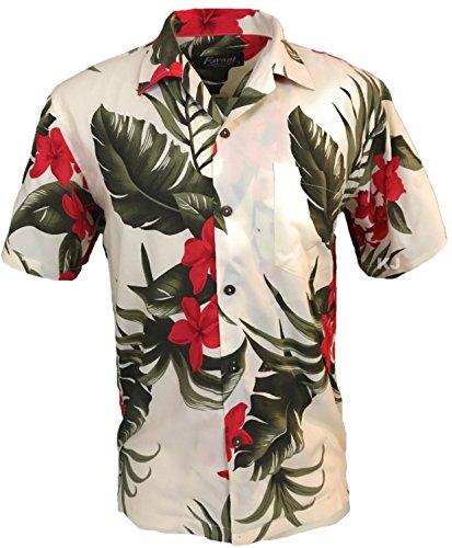 Men's Hawaiian Aloha Tropical Luau Beach Floral Print Shirt (Large, ()