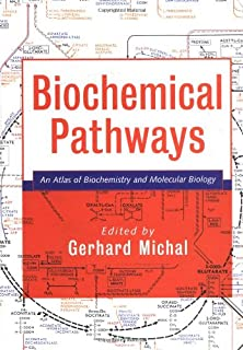 Understanding Biochemical Pathways: A Pattern-Recognition Approach ...