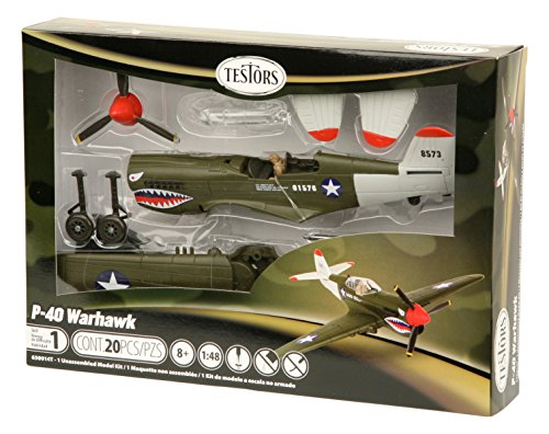 Testors P-40 Warhawk Aircraft Model Kit (1:48 Scale)
