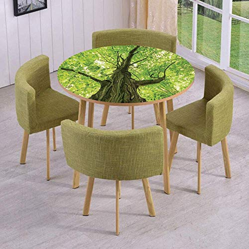 SINOVAL Fashion Round Table/Wall/Floor Decal Strikers/Removable/Old Big Majestic Tree Environment Countryside Eco Solidarity National Park Scenery