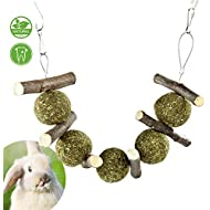 PETLAOO Bunny Chew Toys for Teeth, Improve Dental Health - 100% Natural Organic Apple Sticks - Handmade, Suitable for Rabbits, Chinchillas, Guinea Pigs, Hamsters, Chewing/Playing
