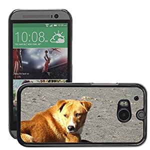 Super Stella Slim PC Hard Case Cover Skin Armor Shell Protection // M00148843 Dog Puppy Canine Pet Animal // HTC One M8