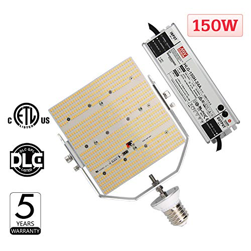 1000W Mh Flood Light in US - 8