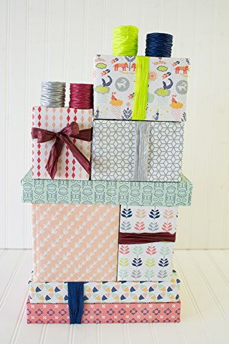 Southwest Style Gift Wrapping Set - Mix and Match Wrapping Paper and Ribbon - Eco-friendly Gift Wrap by Wrappily