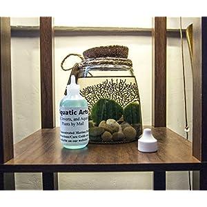 Marimo Moss Ball Food by Aquatic Arts