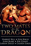 Download Two Mates for the Dragon: MMF Bisexual Menage Romance in PDF ePUB Free Online