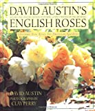 David Austin's English Roses: Glorious New Roses for American Gardens